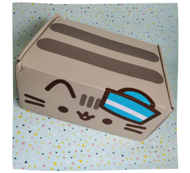 Pusheen Box Sommer 2019